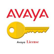 Avaya license cho tổng đài IP OFFICE 1 IP